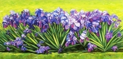 Cycle FLORAL GLADES - IRISES , 2011.