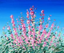 Floral Glades